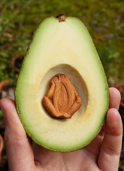 avocado-carving