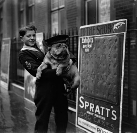 dog-shows-early-20th-century